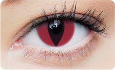 Cat Kontaktlinsen