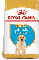 Royal Canin Breed Labrador Retriever Junior (12 kg)