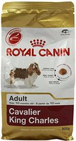 Royal Canin Breed Cavalier King Charles Adult (500 g)