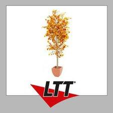 Europalms Herbstbaum mit Zementfuß 180 cm