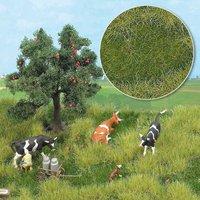Busch Groundcover-Bodendecker: Sommeraue (1306)