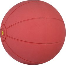 Sport Thieme WV-Medizinball