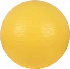 V3Tec Gymnastik Ball 65 cm
