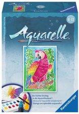 Ravensburger Aquarelle Papagei