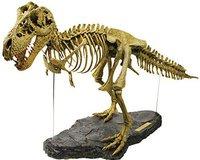 Geoworld T-Rex 3D Skelett