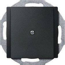 Merten Zentralplatte Leitungsauslass (295614)