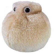 Riesen Mikroben Fettzelle