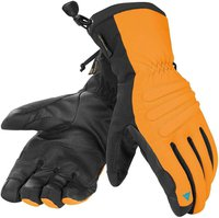 Dainese Anthony Glove D-Dry
