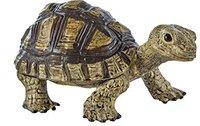 Safari Landschildkröte (258629)