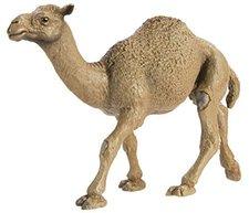 Safari Dromedar (222429)