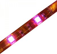 ChiliTec LED-Stripe RGB 1m 30er 12V 6,5W IP44