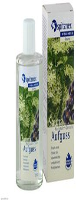 Spitzner Sauna-Aufguss Holunder-Cassis Wellness (190 ml)