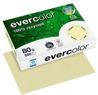 Clairefontaine Forever Evercolor, A4, 80g/qm, gelb (40005C)