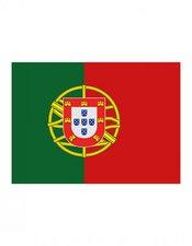 Portugal Fanfahne EM 2016
