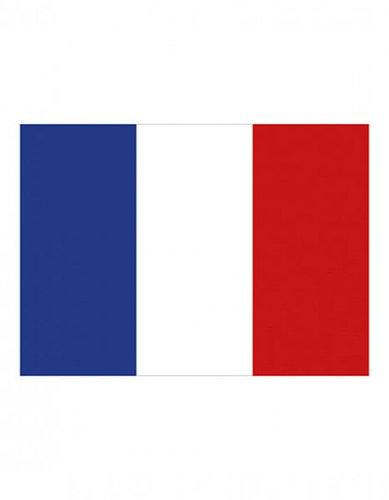 Frankreich Fanfahne EM 2016