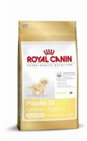 Royal Canin Pudel Junior (500 g)
