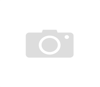Mammut Scraper Kratzbild ohne Rahmen Silber quer - Leopard