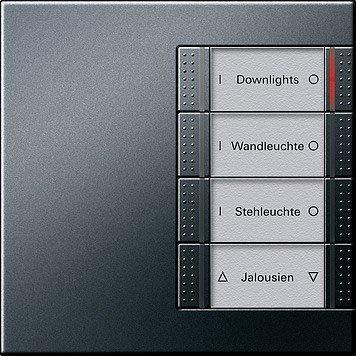 Gira Tastsensor 4-fach, anthrazit (1247671)