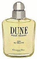Christian Dior Dune pour Homme Eau de Toilette (50 ml)