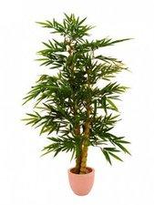 Bambusbaum mit Perlenstamm 210cm