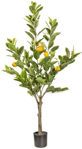 Zitronenbaum künstlich