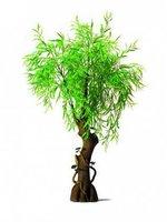 Weiden Waldbaum 200cm