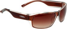 Alpina Eyewear A61 491 (brown transparent/ceramic brown gradient)