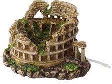 europet bernina Bernina Colosseum ML
