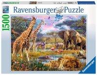 Ravensburger Tigerträume