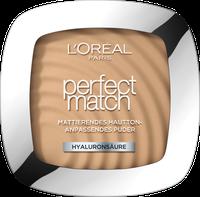 Loreal Perfect Match Powder