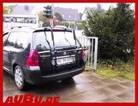 Paulchen System Mittellader Peugeot