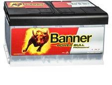 Banner Power Bull 12V 100Ah (P10040)