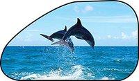 Race Sonnenschutz Delfin