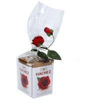 Hachez 10 Rosentäfelchen im Klarsichtbeutel (75 g)