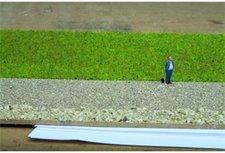 Noch 07072 - Grasmischung Sommerwiese