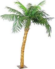 Europalms Cocospalme 320 cm