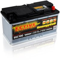 Ective Batteries EnergyCell 12V 100Ah EEC100