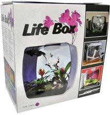 Lucky Reptile Life Box 35