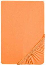 Biberna 2744 Biber Spannbetttuch (90 x 190 - 100 x 200 cm) orange