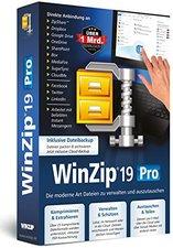 Globell WinZip 19 Pro (DE) (Win)