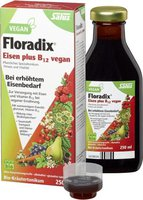 Duopharm Floradix Eisen plus B12 vegan (250 ml)