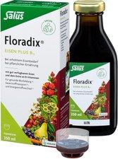 Duopharm Floradix Eisen plus B12 vegan (250 ml)