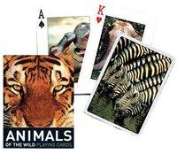 Piatnik Anímals of the Wild Spielkarten