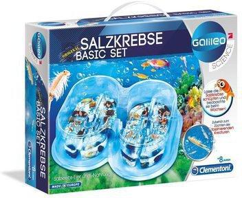 Clementoni Galileo - Salzkrebse Basis-Set