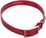 Garmin Hundehalsband (2,5 cm) rot