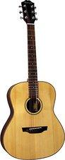 Ashbury Guitars AG-46