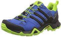 Adidas Terrex Swift R GTX eqt blue/core black/eqt green