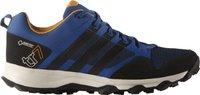 Adidas Kanadia 7 Trail GTX Men eqt blue/core black/chalk white