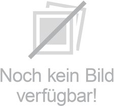 Dr. Groß Flohsamenschalen gemahlen Bio (300 g)