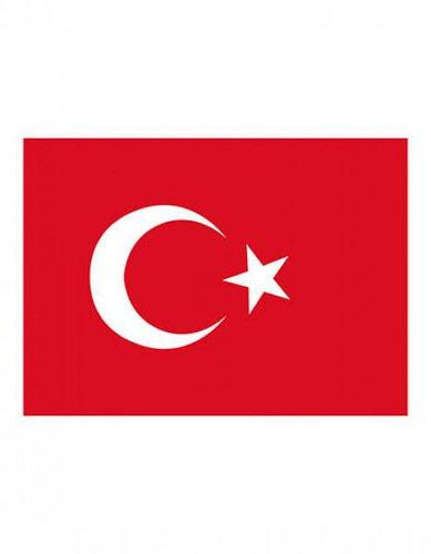 Türkei Fahne EM 2016